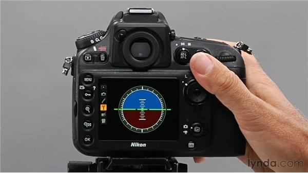 Setting a virtual horizon: Shooting with the Nikon D800