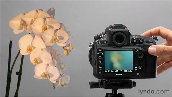 Adjusting white balance manually: Shooting with the Nikon D800