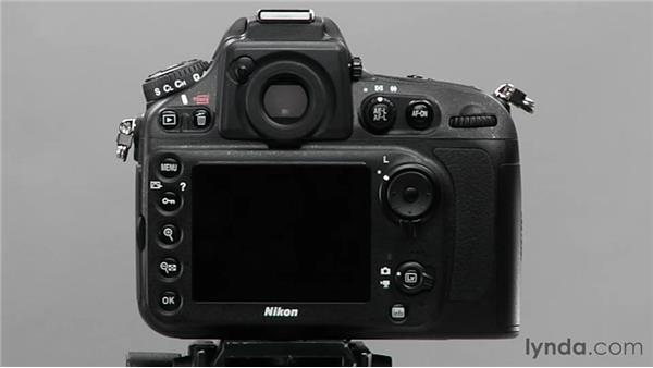 Exploring Continuous mode: Shooting with the Nikon D800