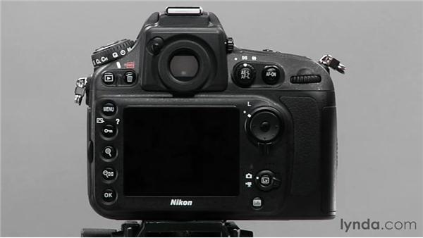 Exploring Quiet mode: Shooting with the Nikon D800