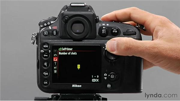 Using the self-timer: Shooting with the Nikon D800