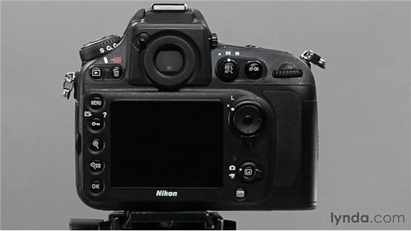 Exploring metering modes: Shooting with the Nikon D800