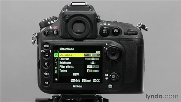 Using the monochrome picture control: Shooting with the Nikon D800