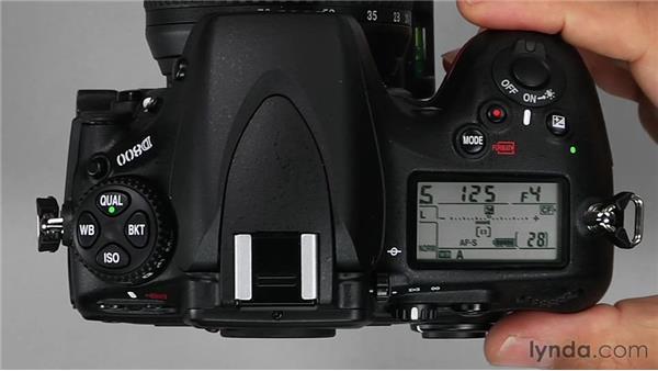 : Shooting with the Nikon D800