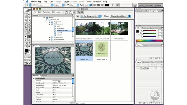 file browser interface: New in Photoshop CS