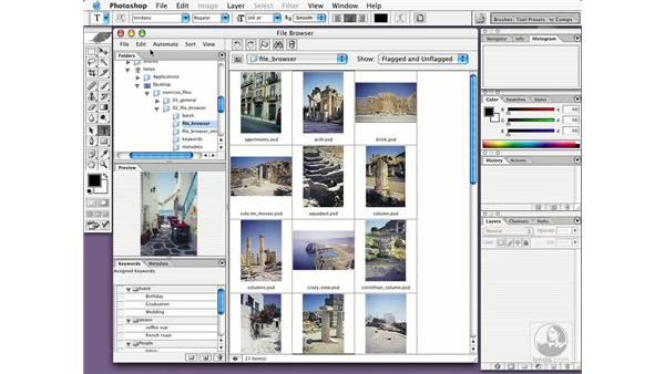 organizing images: New in Photoshop CS