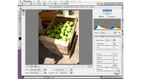 raw camera files: New in Photoshop CS