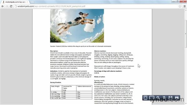 Making the most of PDFs: Creating an Effective Content Strategy for Your Website