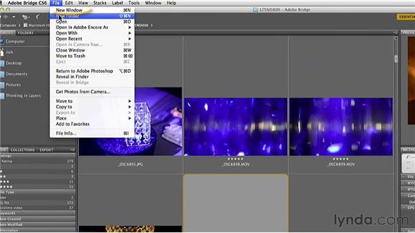 Using Bridge to organize media: Practical Motion Background Workshop