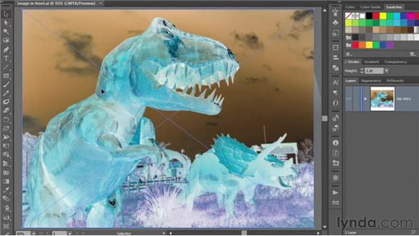 Illustrator and the photographic image: Illustrator CS6 One-on-One: Intermediate