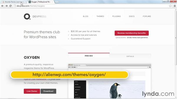 Things to keep in mind when using Oxygen: Start with a Theme: Magazine Styles in WordPress