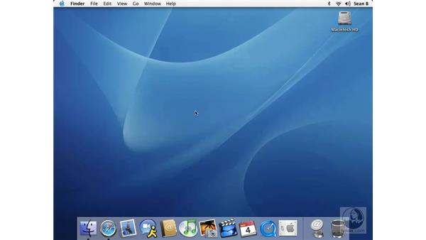 the dock: Learning Mac OS X 10.3 Panther