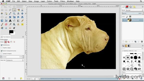 Using Fuzzy Select: GIMP Essential Training