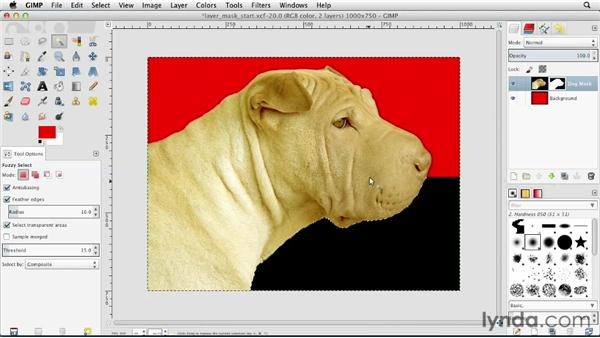 Creating a layer mask: GIMP Essential Training