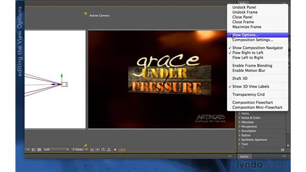 3D view options: After Effects Apprentice 11: 3D Space