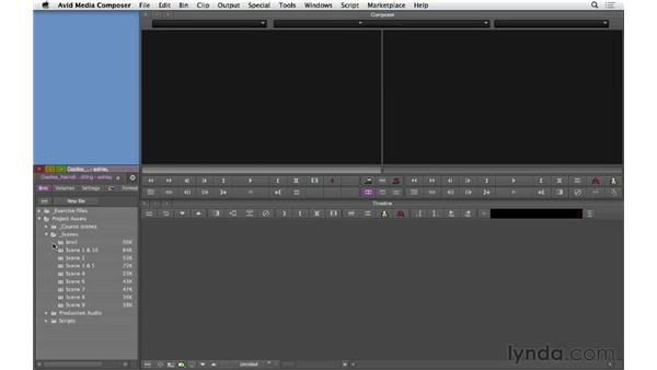 Looking at the project structure and organization: Narrative Scene Editing with Avid Media Composer
