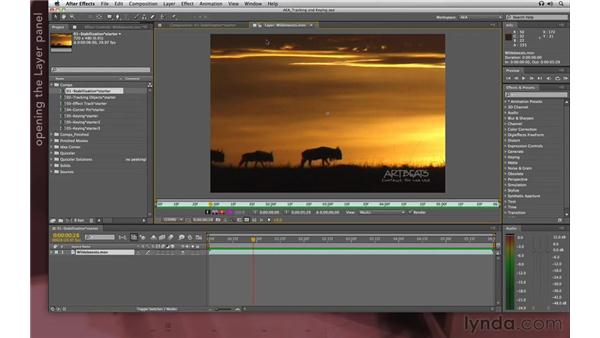 Setting up a stabilization: After Effects Apprentice 12: Tracking and Keying