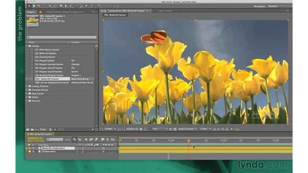 Basic Roto Brush setup: After Effects Apprentice 13: Paint, Roto, and Puppet