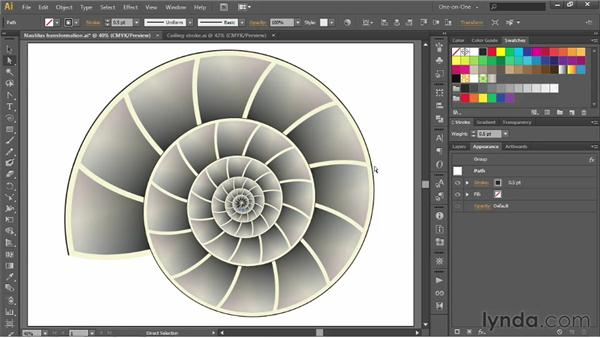 Applying a stroke to an entire layer: Illustrator CS6 One-on-One: Advanced
