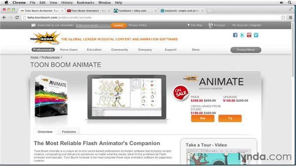 What's next?: Animating Characters in Toon Boom Animate