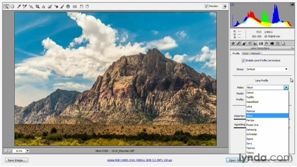 Fixing lens correction automatically: Photoshop for Video Editors: Core Skills