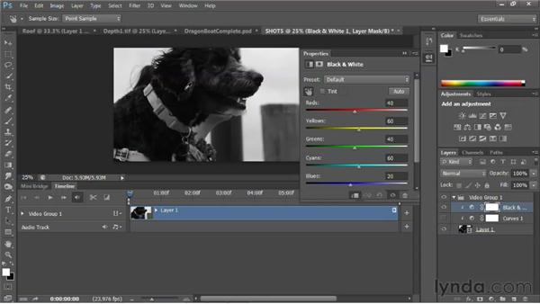 Exploring matched presets: Photoshop for Video Editors: Core Skills