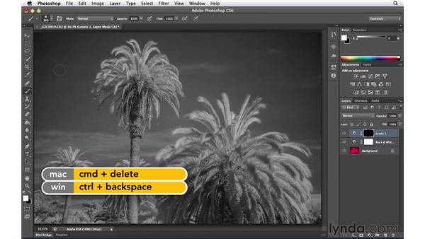 Processing the infrared image: Foundations of Photography: Specialty Lenses