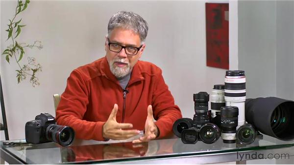 Working with ultra-wide lenses: Foundations of Photography: Specialty Lenses