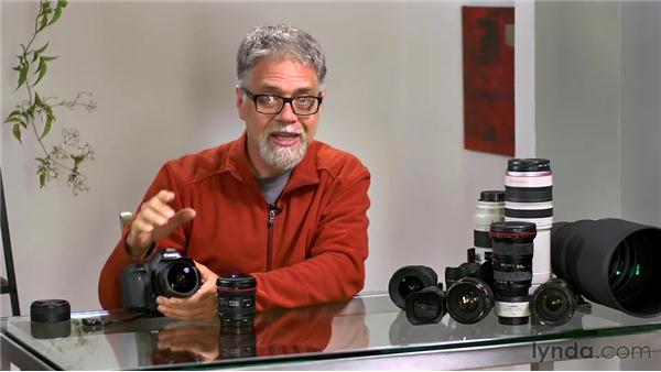 Understanding fisheye lenses: Foundations of Photography: Specialty Lenses