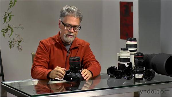 Understanding tilt shift: Foundations of Photography: Specialty Lenses
