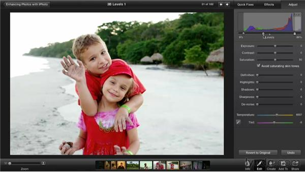Making a Levels adjustment: Enhancing Photos with iPhoto