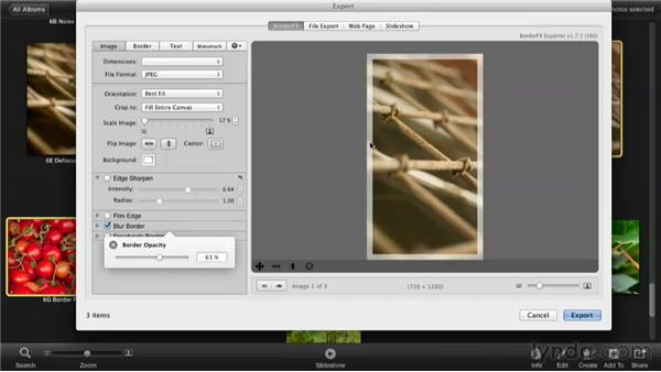 Adding borders with iBorderFX: Enhancing Photos with iPhoto