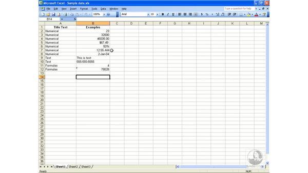 Opening new workbooks: Excel 2003 Essential Training