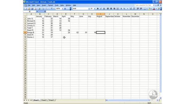 Entering data: Excel 2003 Essential Training