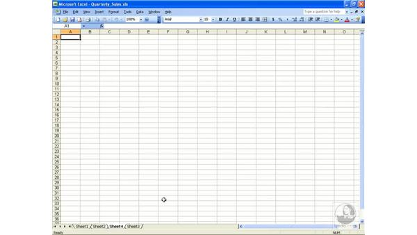 Add and delete worksheets: Excel 2003 Essential Training