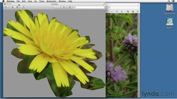Working with images in Preview: Mac OS X Mountain Lion Essential Training