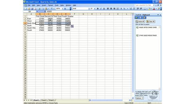 Worksheet data: Excel 2003 Essential Training