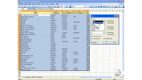 Creating lists: Excel 2003 Essential Training