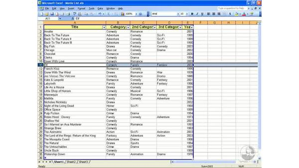 Printing and hiding data: Excel 2003 Essential Training