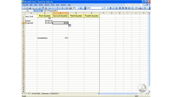 External references: Excel 2003 Essential Training