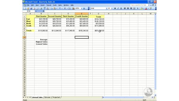 Functions: Excel 2003 Essential Training