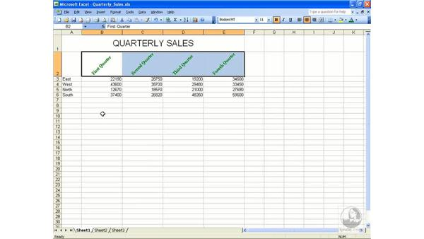 Rotate and indent: Excel 2003 Essential Training