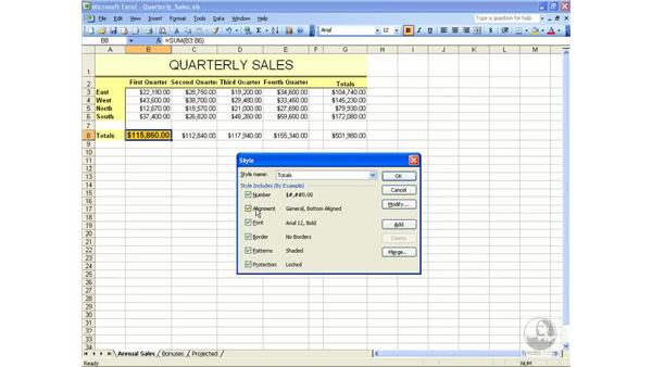 Styles: Excel 2003 Essential Training