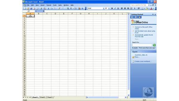 Smart documents: Excel 2003 Essential Training
