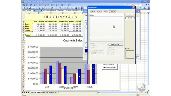 Inserting images: Excel 2003 Essential Training