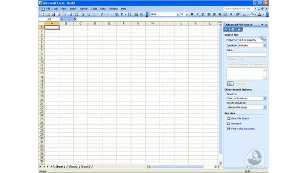 File search: Excel 2003 Essential Training