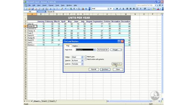 Find and replace: Excel 2003 Essential Training