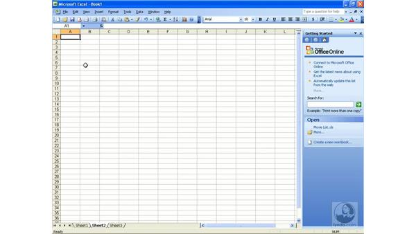 Delimited data: Excel 2003 Essential Training