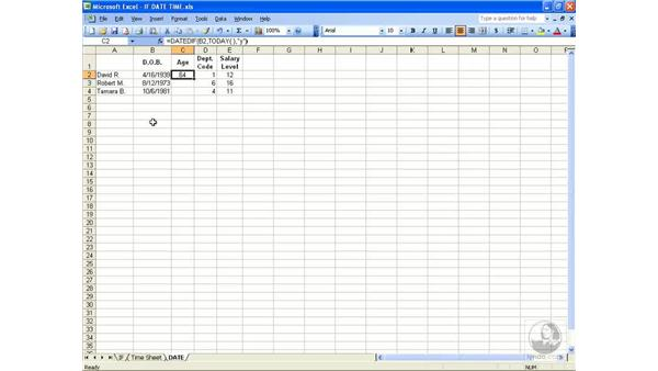 Date and time: Excel 2003 Essential Training