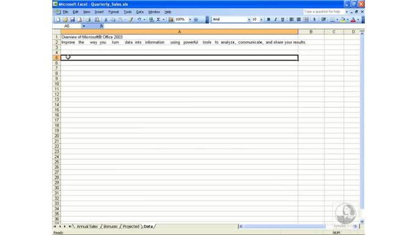 Special characters: Excel 2003 Essential Training